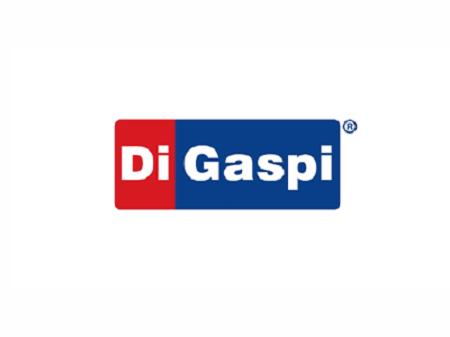 2 Via fatura Di Gaspi – 2 via sem juros【2020】